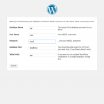Install WordPress DataBase Information