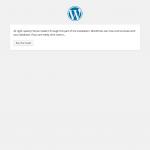 Install WordPress Run the Installation